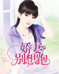 萤火紫小说