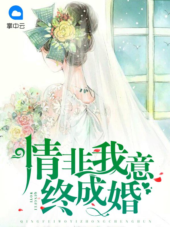 【情非我意终成婚在线试读精彩阅读大结局】主角赵天易齐真