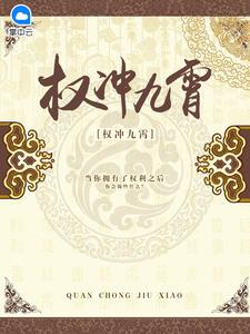 [YY小说]《权冲九霄》官场小说全本阅读1030章