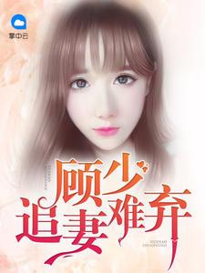 [YY小说]《顾少追妻难弃》总裁豪门小说全本阅读309章