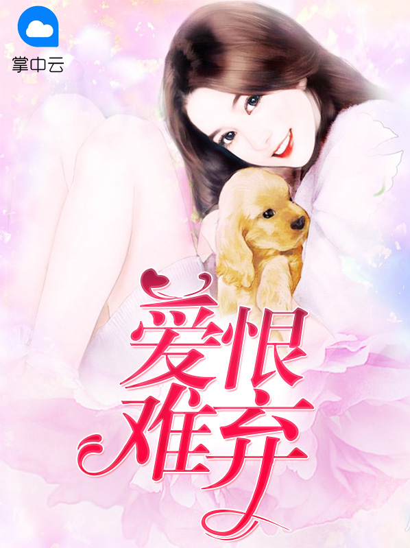 香港赌石小说