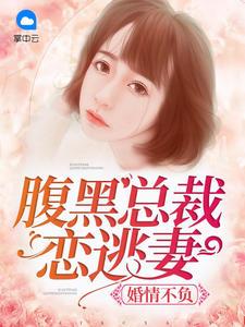 [YY小说]《婚情不负:腹黑总裁恋逃妻》总裁豪门小说全本阅读1729章