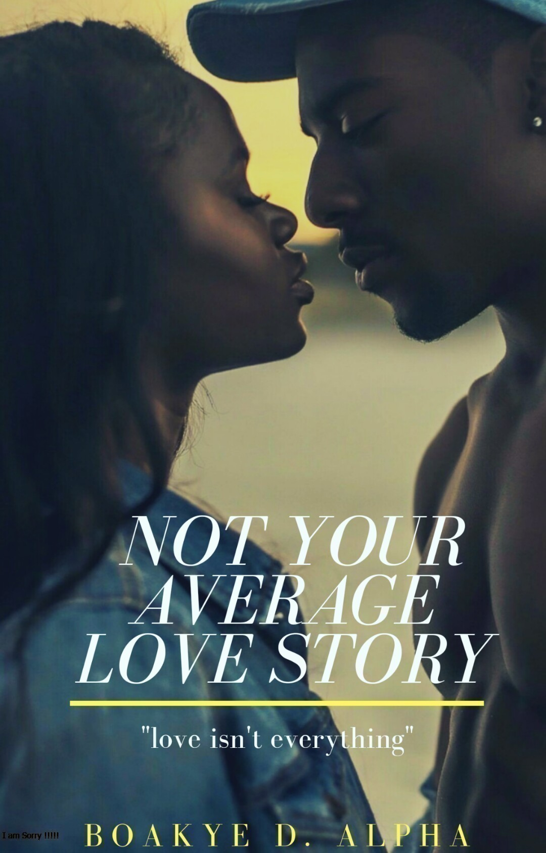 Not Your Average Love Story